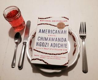 Americanah   by Sarah Mirk
