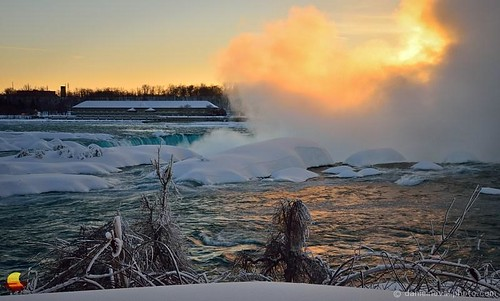 trees winter sunset snow cold ice nature contrast river landscape niagarafalls frozen waterfall warm niagara falls photograph edge wonderland mighty shrubs horseshoefalls