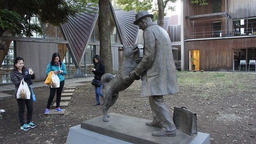 Hachiko and his master reunited | by Manish Prabhune