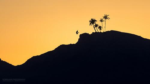 costablanca elmarmediterráneo españa spain themediterraneansea thewhitecoast orange silhouettes sunset vacation