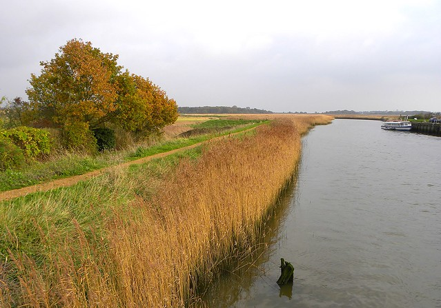 The Sailor's Path & River Alde at Snape, Suffolk