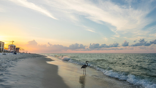 ocean travel sky orange seascape color detail bird beach water colors beautiful clouds sunrise us sand view unitedstates florida peaceful oceanview impressive pensacola perdidokey