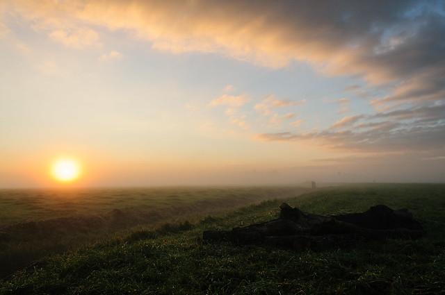 Frisian Sunrise