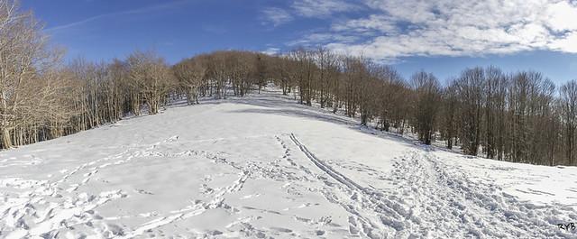 Panoramica nevada