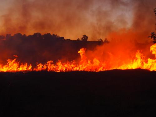fire sydney australia nsw bushfire ingleburn