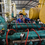 40682-013: Integrated Renewable Biomass Energy Development Sector Project (formerly Rural Energy and Ecosystem Rehabilitation - Phase II) in People's Republic of China