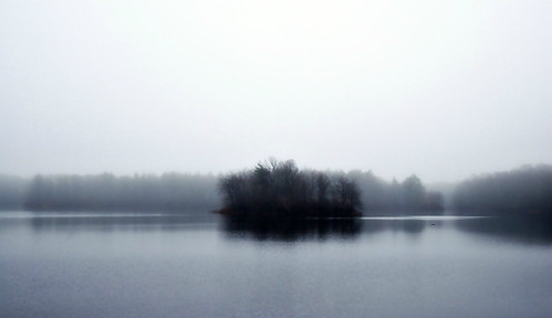 flickr foto photo image capture picture photography sony fog foggy landscape water lake pond island trees eerie dark fall autumn outside outdoors nature massachusetts sonydscw300 darkmorning silentmorning naturelover naturephotography turnpikelake plainvillemassachusetts newengland