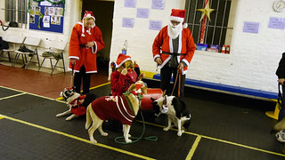 Christmas Party 2014 | by Chadkirk Dog Training Club