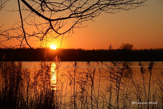 DSC_4563pf lago di Annone