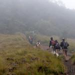 12 Viajefilos en Sri Lanka. Nuwara Eliya 25