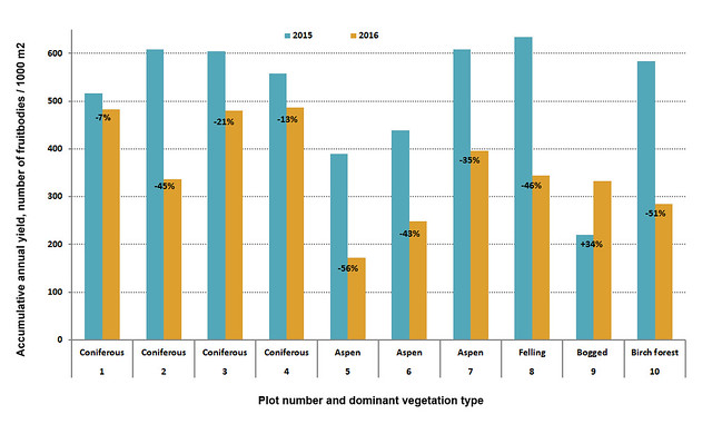 Annual yields in different plots and vegetation types.