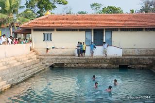 Peninsula Jaffna. Keerimalai spring.