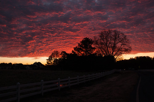 morning trees red sky texture nature clouds sunrise nc nikon december northcarolina onfire 2014 chathamcounty d40