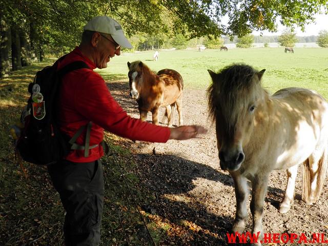 22-10-2011             Driebergen         26 km (133)