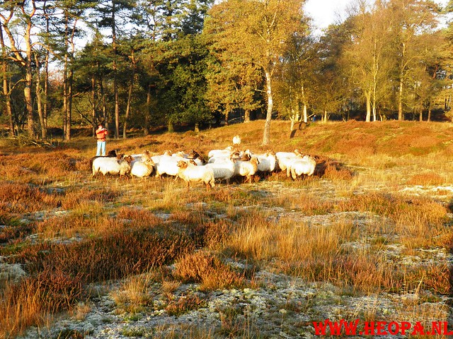 22-10-2011             Driebergen         26 km (22)