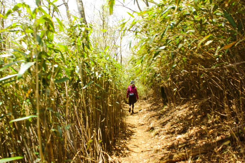 2014-05-06_02562_九州登山旅行.jpg