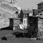IMG_8000 Beograd