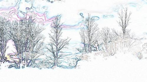 winter tree landscape bare horizon whites wonderland dreamscape
