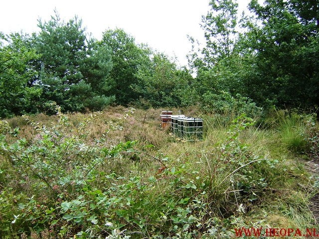 Veluwse Walkery 06-09-2008 40 Km (82)