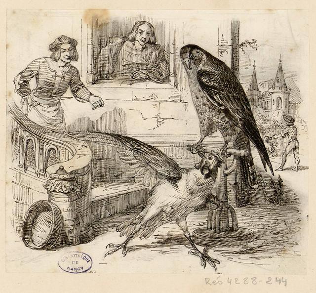 Le faucon et le chapon