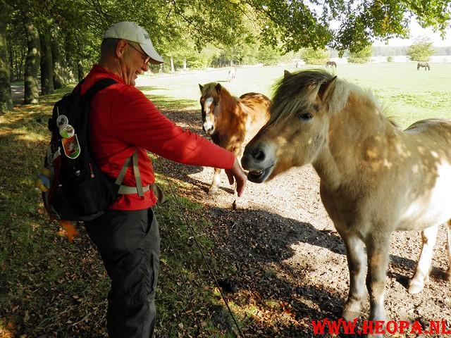 22-10-2011             Driebergen         26 km (134)