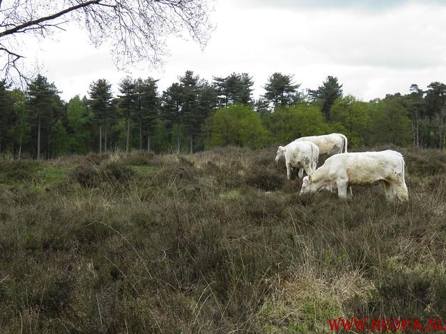 05-05-2012 Hilversum (40)