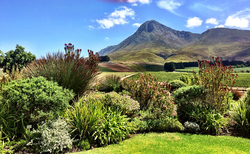 africa restaurant march view south creation valley western cape tasting friday fynbos wines 2015 hemelenaarde mar2015 06mar2015