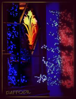 Daffodil Christmas Display 2 In The Christmas Displays