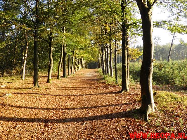 22-10-2011             Driebergen         26 km (50)