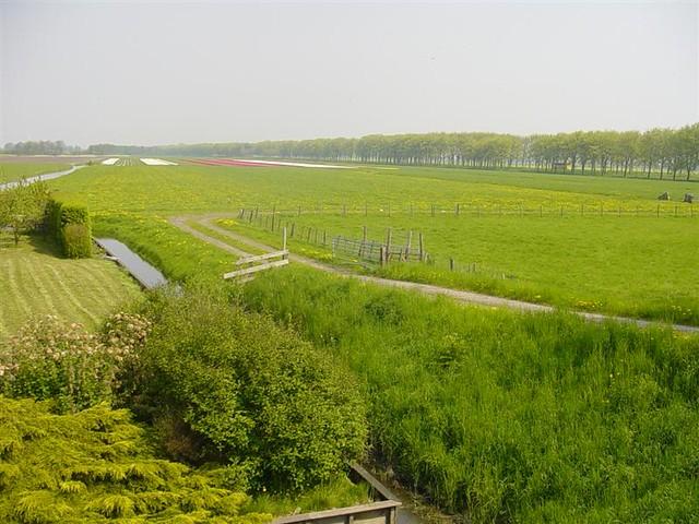 Hoorn          07-05-2006 30Km  (19)