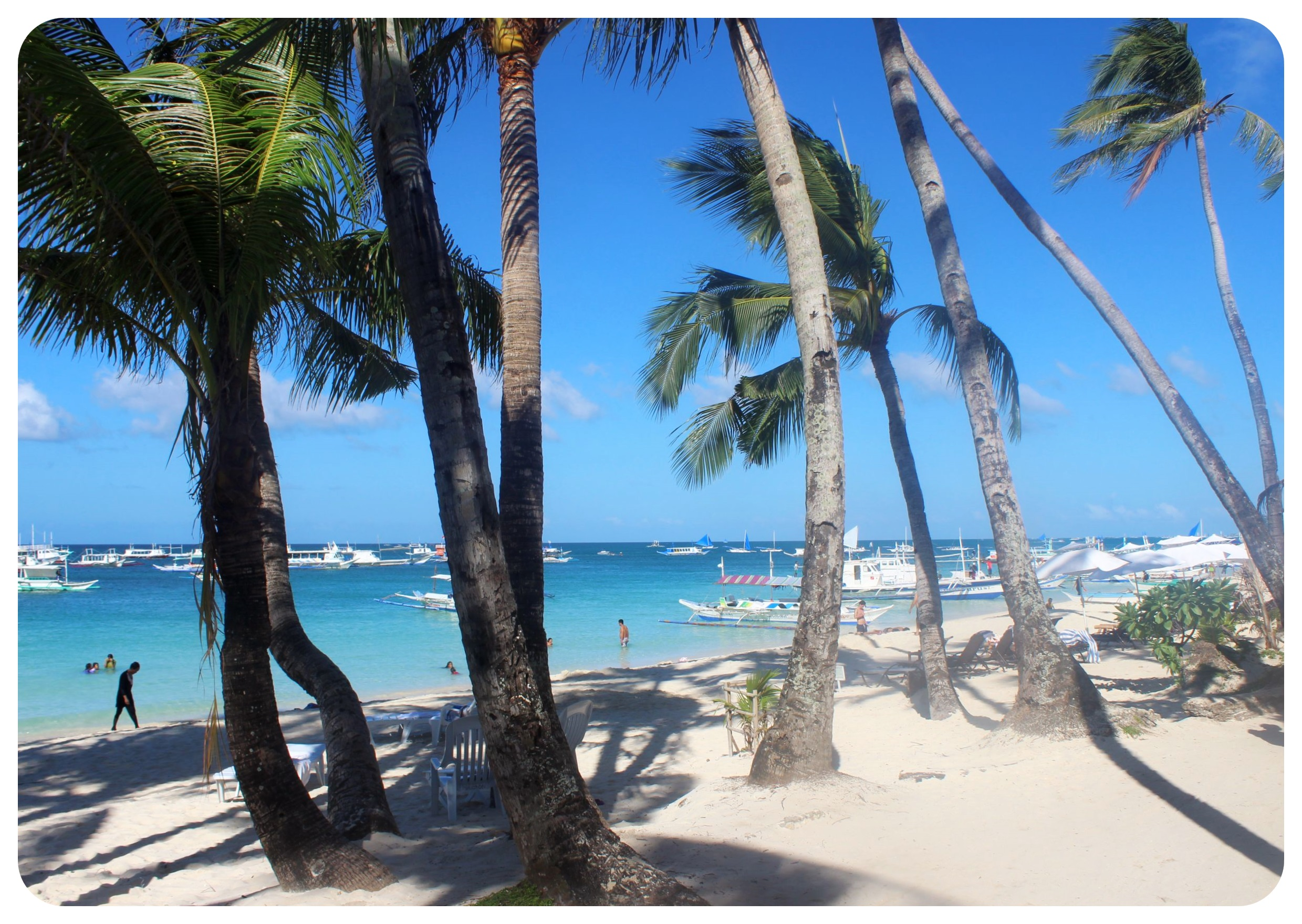 boracay beach palm trees