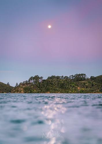Moonrise Kingdom   by Mikey Mack