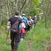 Ruta do Castelo da Pena e o Mosteiro do Bon Xesús - 12/05/2012
