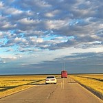 caravan-mongolia-golden fields-blue sky