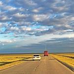 caravan-mongolia-golden fields-blue sky
