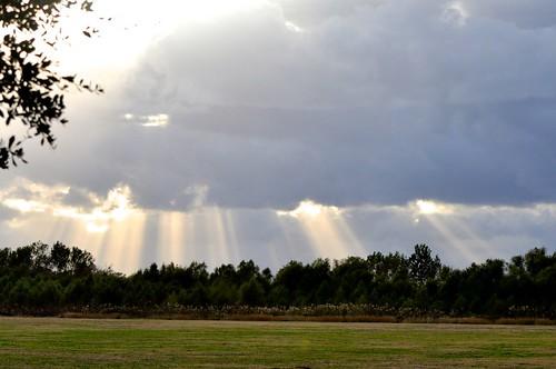 sun clouds texas sugarland brazosriver streamingsunlight ahobblingaday holesintheclouds justinpbrindleytrail pawmspringsdogpark sugarlandmemorialpark brazosrivercorridor
