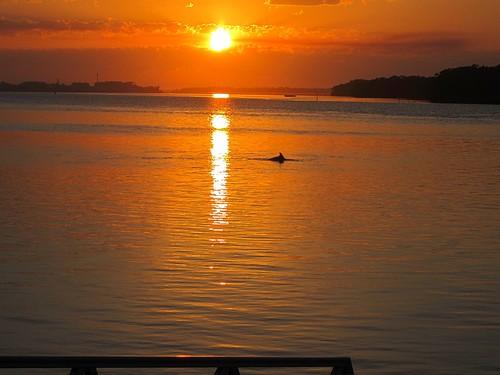 sky sun reflection water clouds sunrise river dolphin ballina richmondriver canonixus115hs