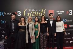 Catifa vermella VII Premis Gaudí (67)