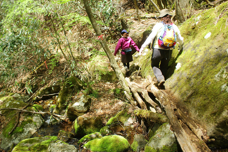 2014-05-06_02621_九州登山旅行.jpg