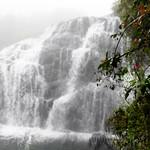 12 Viajefilos en Sri Lanka. Nuwara Eliya 30