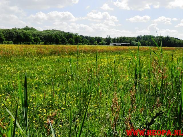 14-05-2011   Doorn 40 Km  (64)