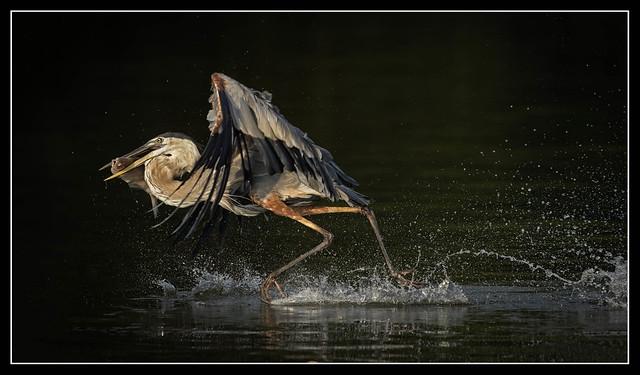 Walking (running) on Water...