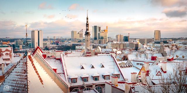 Tallinn, winter