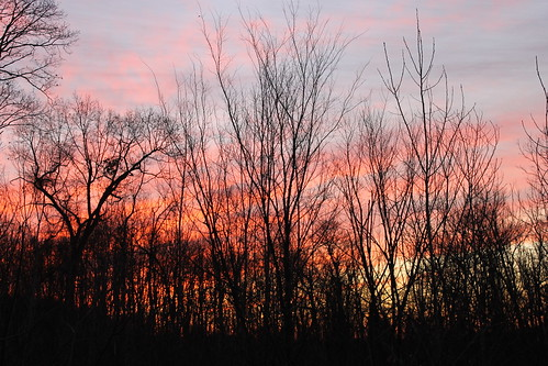 morning red clouds sunrise purple michigan redsky saline happynewyear purplesky 2015 purplemorning redmorning hny2015 happynewyear2015 saline01012015