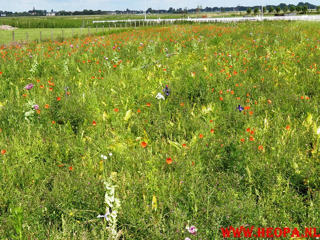 17-06-2011   Alkmaar 3e dag 25 km (19)