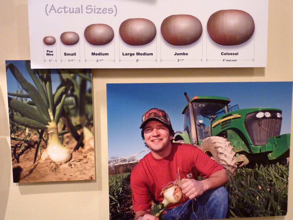 Vidalia - Onion Museum