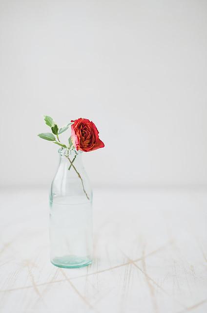 Glass&Rose