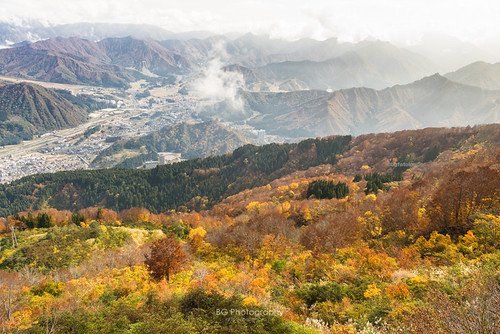 旅行 a7 bgphoto clouds hk hongkong image japan landscape maples momiji mountain niigata nippon outdoor photo photography sony travel bellphoto あき 山 戶外 攝影 新潟 旅遊 日本 楓 港 秋 紅葉 雲海 風景 香港