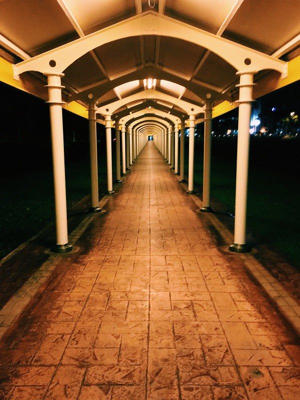 Walkway to the train station...VSCO cam