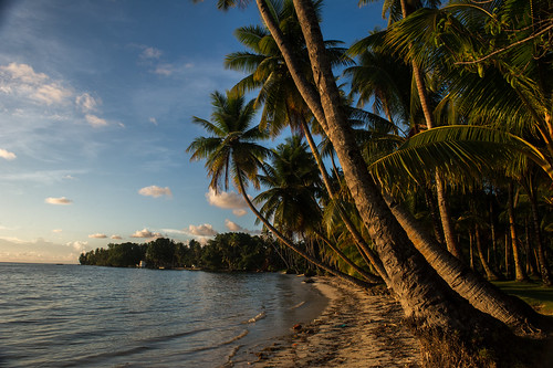 federatedstatesofmicronesia micronesia fsm pacific sunset sky clouds sea ocean shore beach nature scenery scenicview rural province island coconut coconuttrees trees